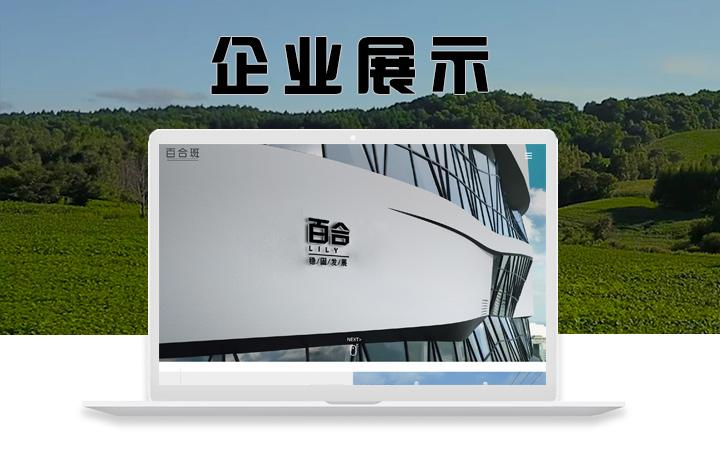 政府汽车协会外贸服装物流公司官网企业网站建设定制开发制作设计