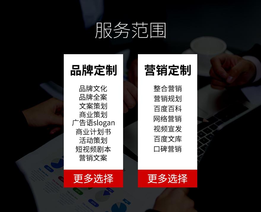 商业计划书融资策划PPT招商项目路演可行性研究报告代写作撰写