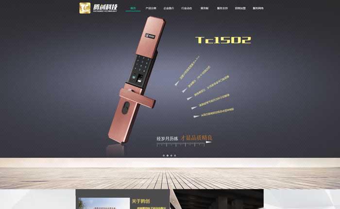 企业网站开发模板网站建设高端建站手机网站商城建设三网合一条龙