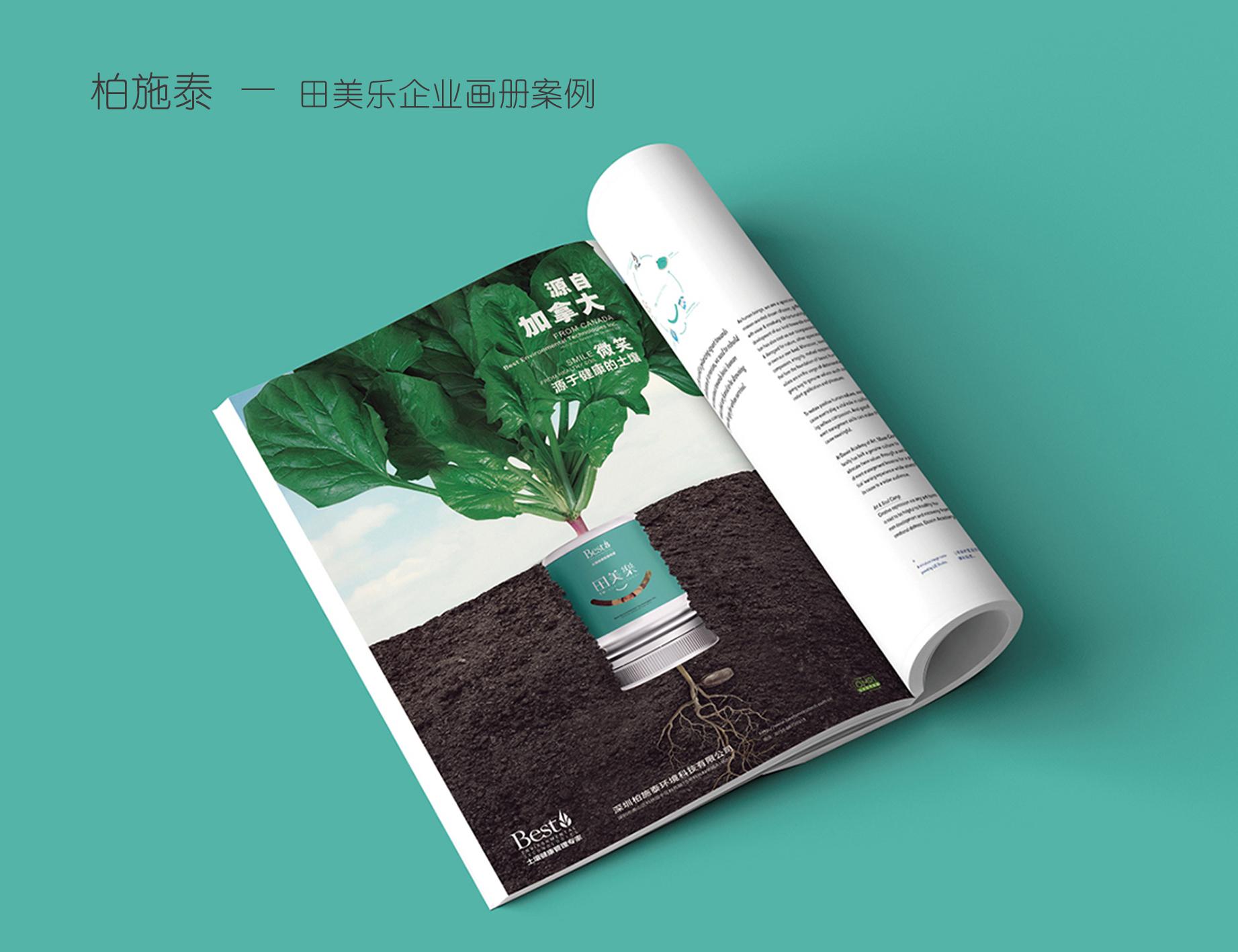 总监版【易拉宝设计】教育/美容健身/餐饮/企业