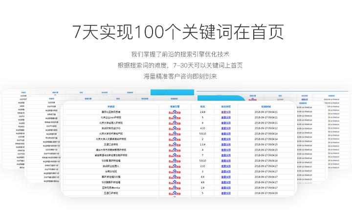 网站推广SEO优化搜索SEO关键词排名权重优化营销推广