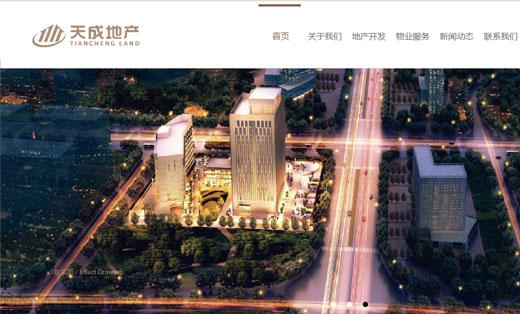 天成地产官方网站—网站建设