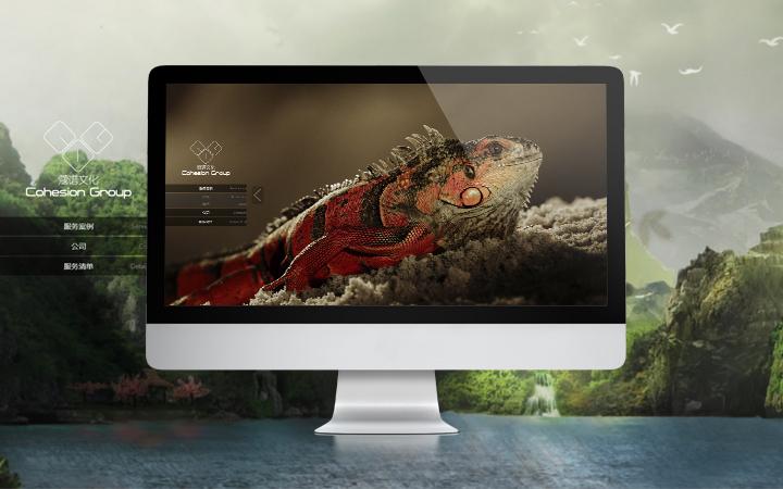 视频网站定制开发