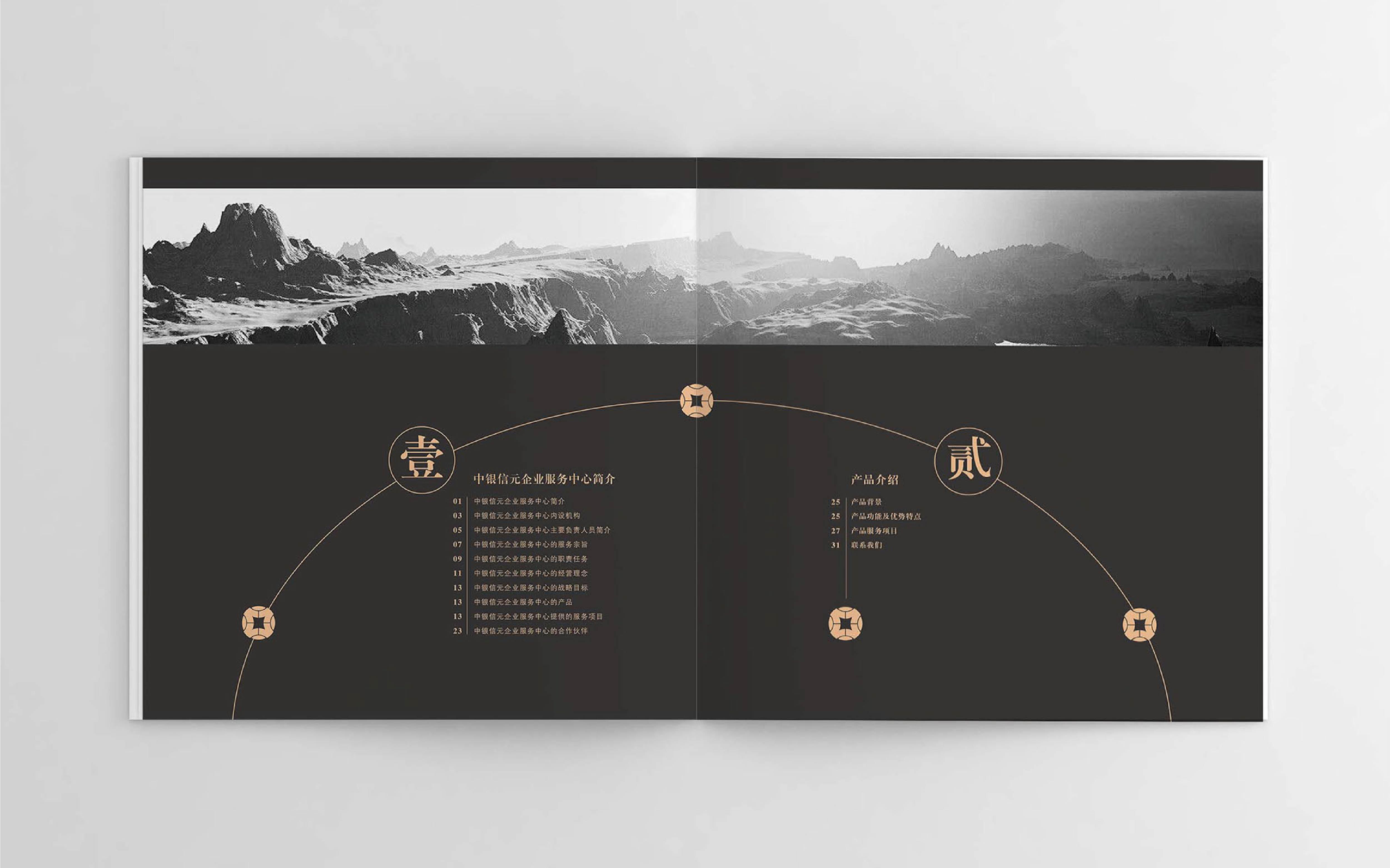 原创说明书设计画册设计产品手册数据会议简介电子家电影集宣传册