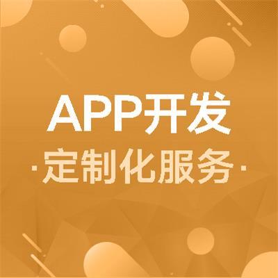 APP开发定制化服务