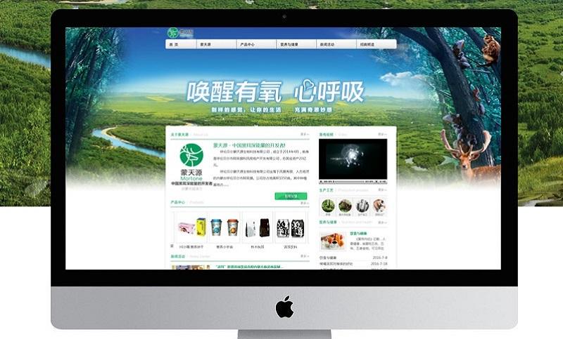 网站建设网站定制/网站设计企业网站开发响应式网站定制H5