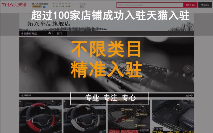 【天猫代办总监操刀】入驻方案天猫京东品牌运营计划书PPT开店