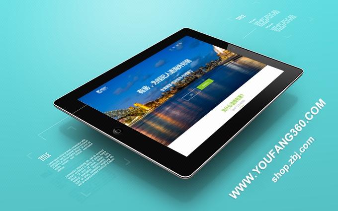 网站维护/网站搭建/金融网站/网站安全维护/服务器安全维护