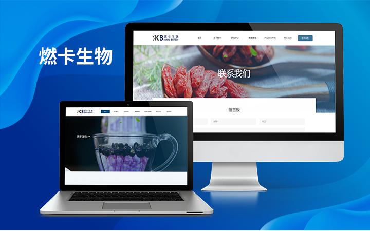 企业手机网站建设展示型网页制作跨境电商网站外贸网站定制开发