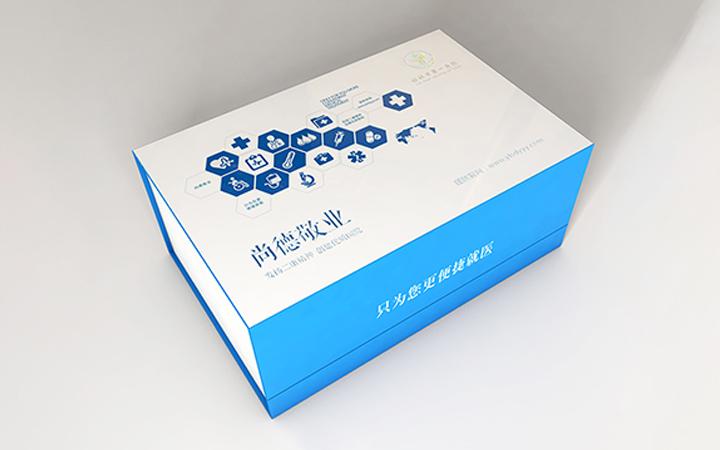 坚果小吃水产茶叶化妆品面膜米药品饮料水果粽子年货包装盒设计