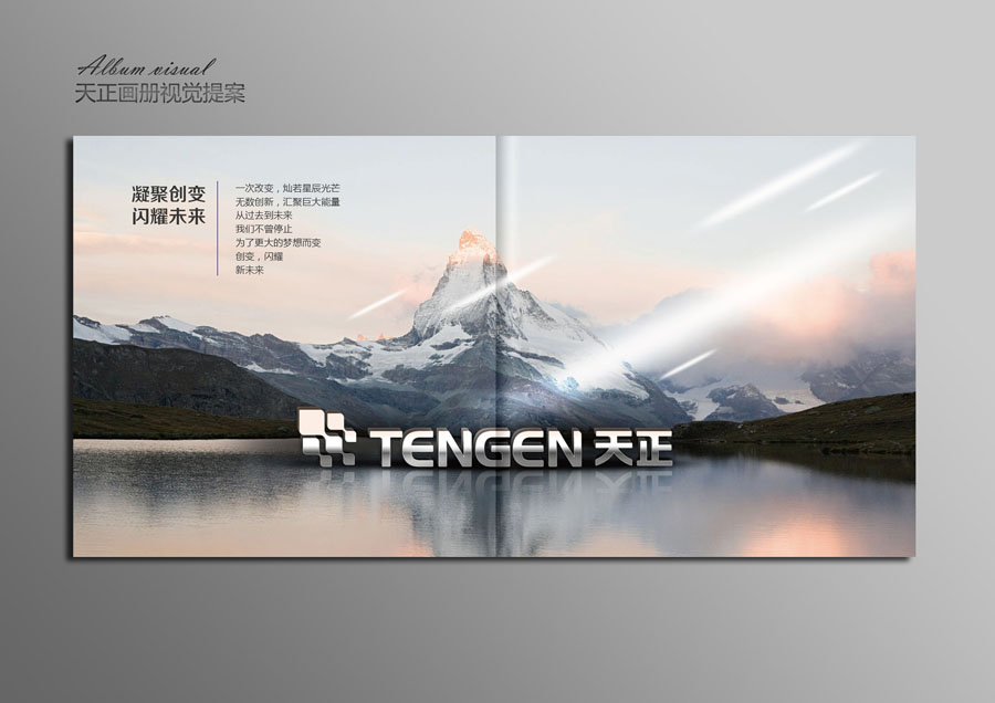 【改变广告】画册设计企业画册产品画册金融餐饮IT酒店