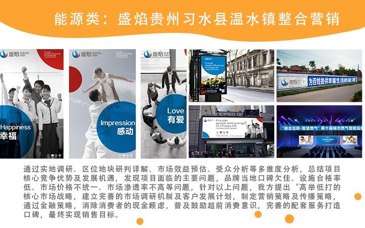 品牌整合营销全案策划网络营销推广营销文案撰写品牌宣传方案定制